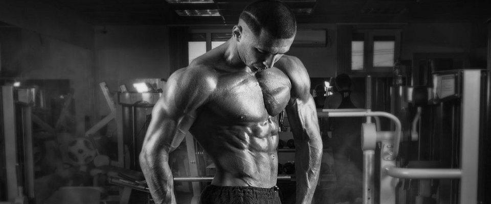 Suplementação esportiva: Como ganhar massa magra