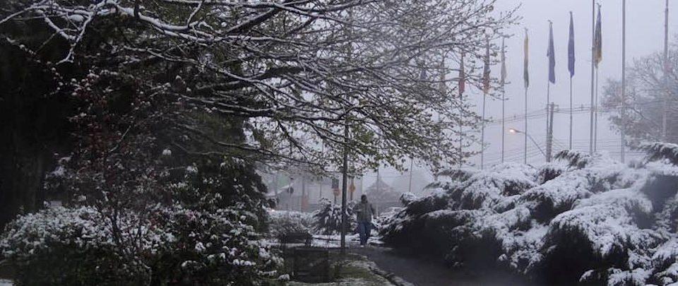 Você sabia? Existem 5 cidades onde é possível ver neve no Brasil