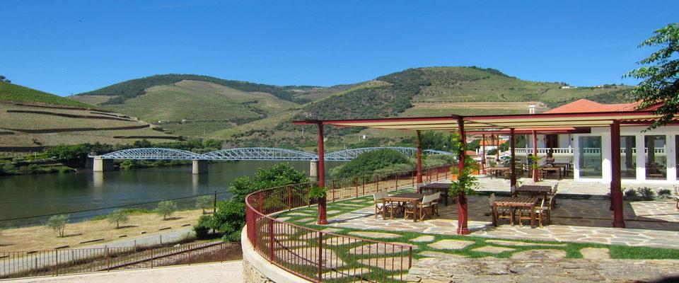 Vinho do Porto: Conheça as paisagens inesquecíveis das plantações no Douro